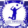 ASD PRIMAVERA BAIANO